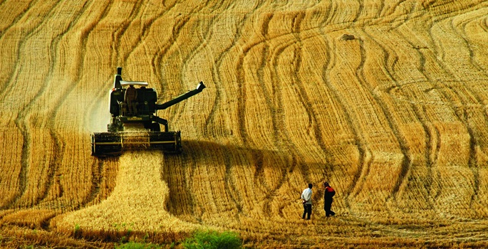Ali Ekber Yıldırım: Çiftçiye gübre, yem ve ilaç indirimi enflasyonu düşürür mü?