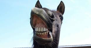 Strateji: Atın dişlerine bakmak