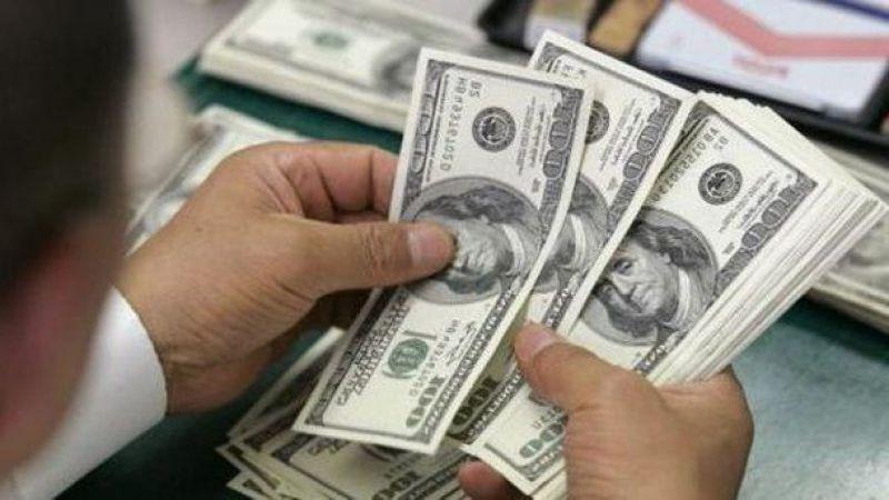 Bireyler döviz aldı, şirketler FX borç ödedi