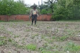 Hükümet tarımda kolları sıvadı: Su devrimi başlıyor