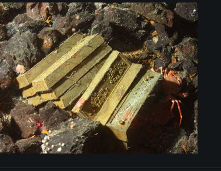 Recep Erçin:  128 milyarı bırak kaçırılan altınlara bak