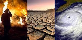 UNESCO : 2030'a doğru Dünya'nın en büyük sorunu iklim değişikliği