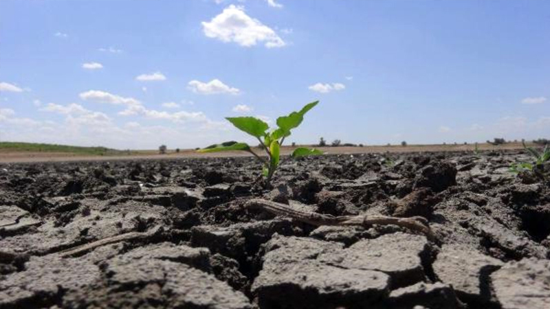 Yoğun kuraklık sürüyor, gıda enflasyonu yükselecek…