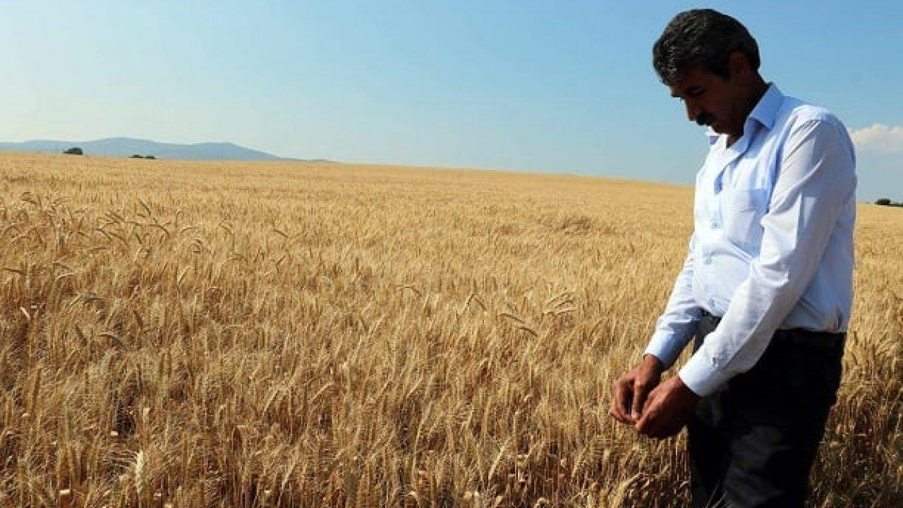 Çiftçi faiz derdinde; borç yapılandırması sadece yükü ağırlaştıracak